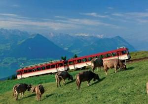 zwitserland activiteiten